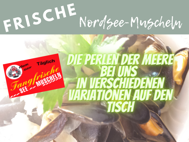 Nordsee-Muscheln-Waldesruh-Saison